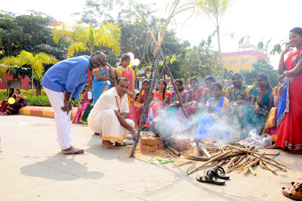Pongal Celebrations 2016